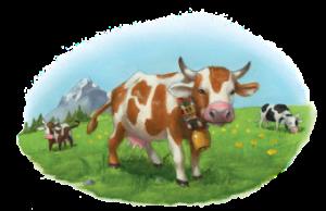 Braun/weiß gefleckte Kuh mit Glocke um den Hals