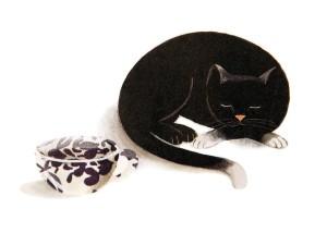 Katze schläft neben Tasse