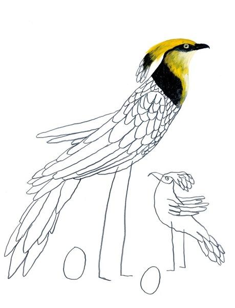 Zwei Vögel zur individuellen und erfinderischen Gestaltung freigegeben