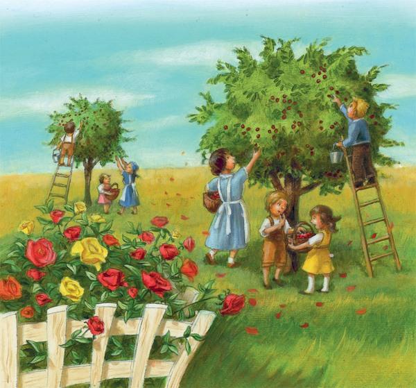 Kinder und Erwachsene pflücken Kirschen im Grünen