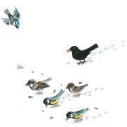 Sechs Vögel picken Körner aus dem Schnee