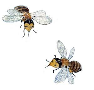 Zwei Bienen mit geschlossenen Augen