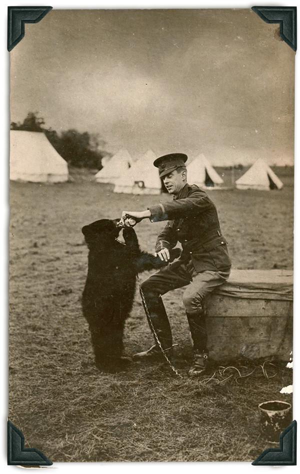 Originalbild vom Soldaten der Babybären füttert