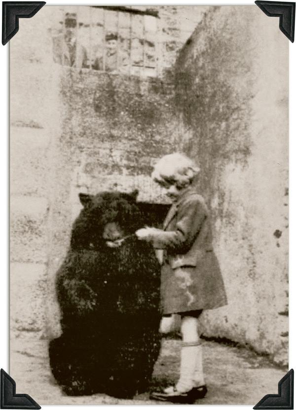 Originalbild von Mädchen, das Bären füttert